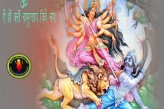 goddess-durga-wallpaper-1280x1024-theshiva.net