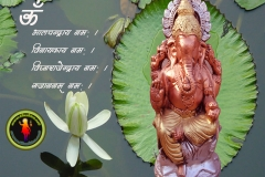 lord-ganesha-wallpaper-1280x1024-theshiva.net