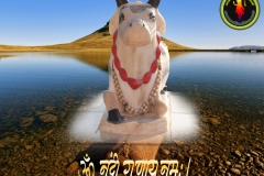 lord-shiva-nandi-gun-wallpaper-1280x1024-theshiva.net