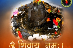 lord-shiva-wallpaper-1280x1024-theshiva.net (3)